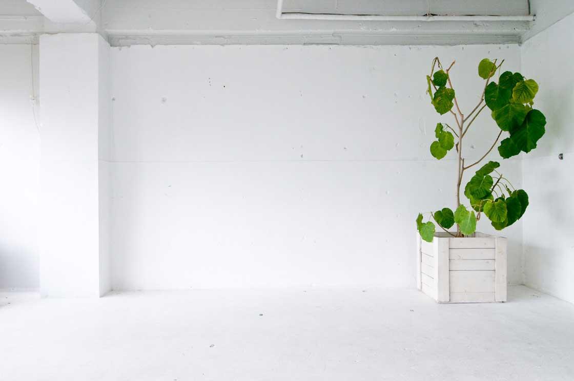 部屋のインテリアとしての壁面装飾の楽しみ方。
